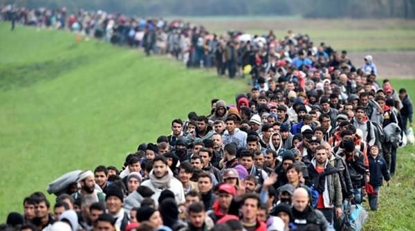 Refugiado é a palavra de 2015