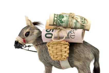 Sabe o que são Money Mules ?